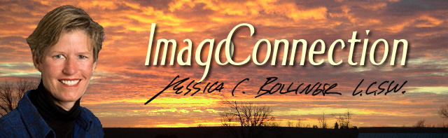 Imago Connection - Jessica C. Bollinger